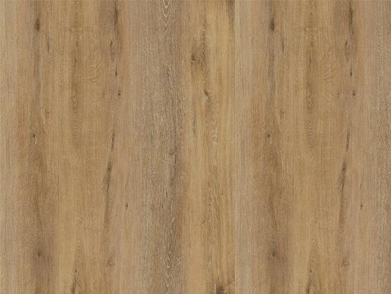 Designbelag Beluga new wood xl zum Kleben - Brantford Oak, BEL128