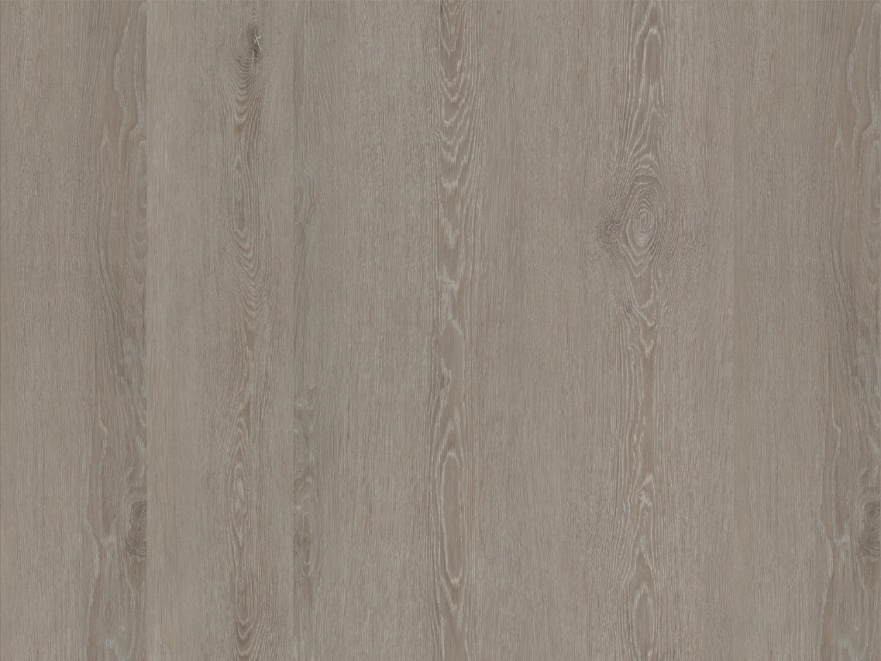 Designbelag Alesso wood – Eiche Namur, 324004