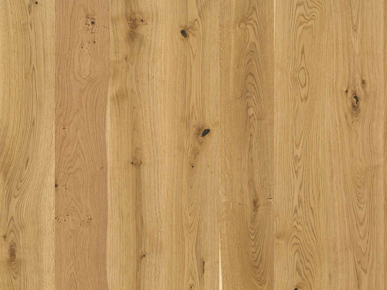 Kork Amora Wood – Altina Oak kurz, 8F5002