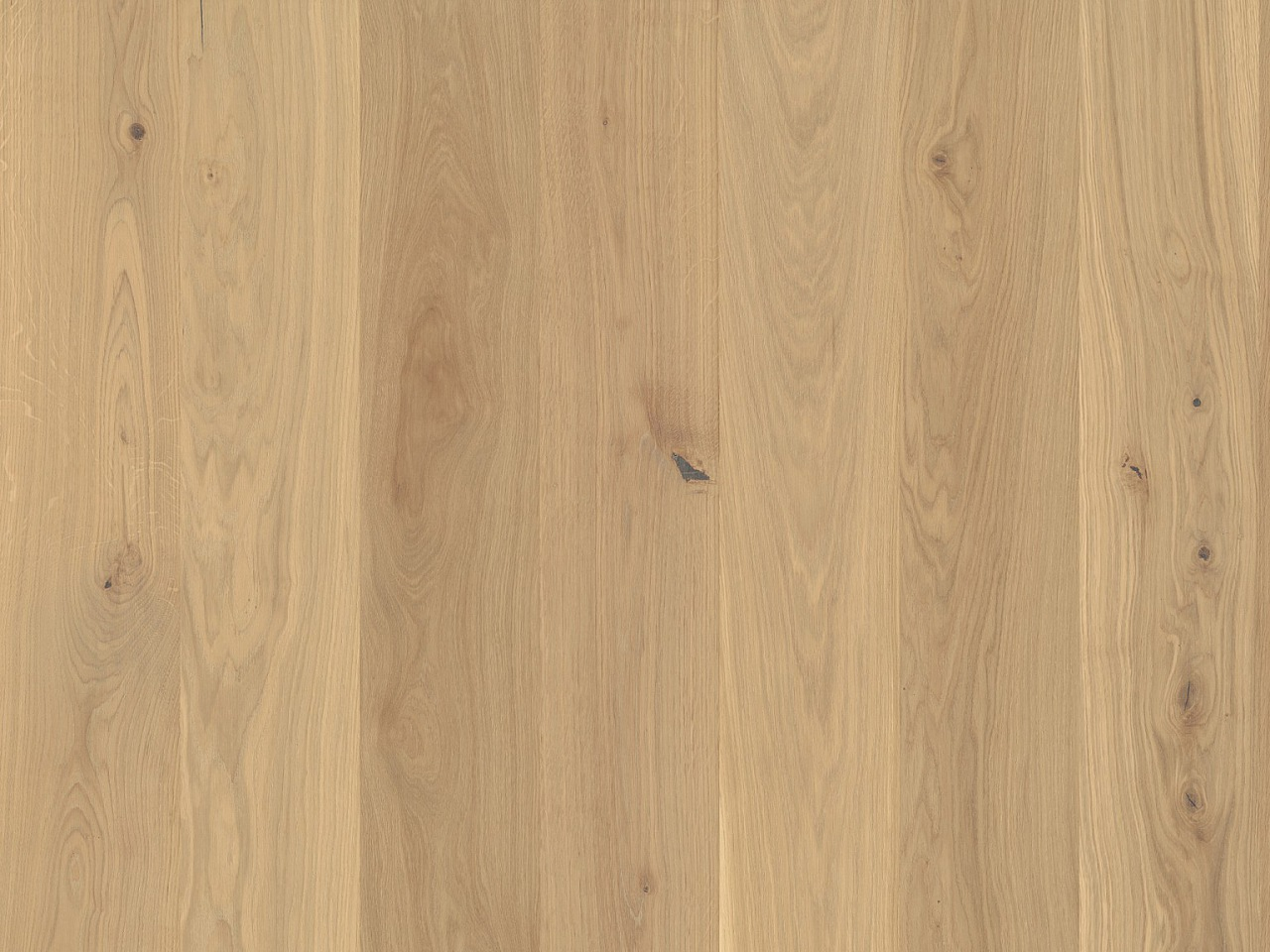 Designbelag Rico wood – Eiche Hilversum, 328002