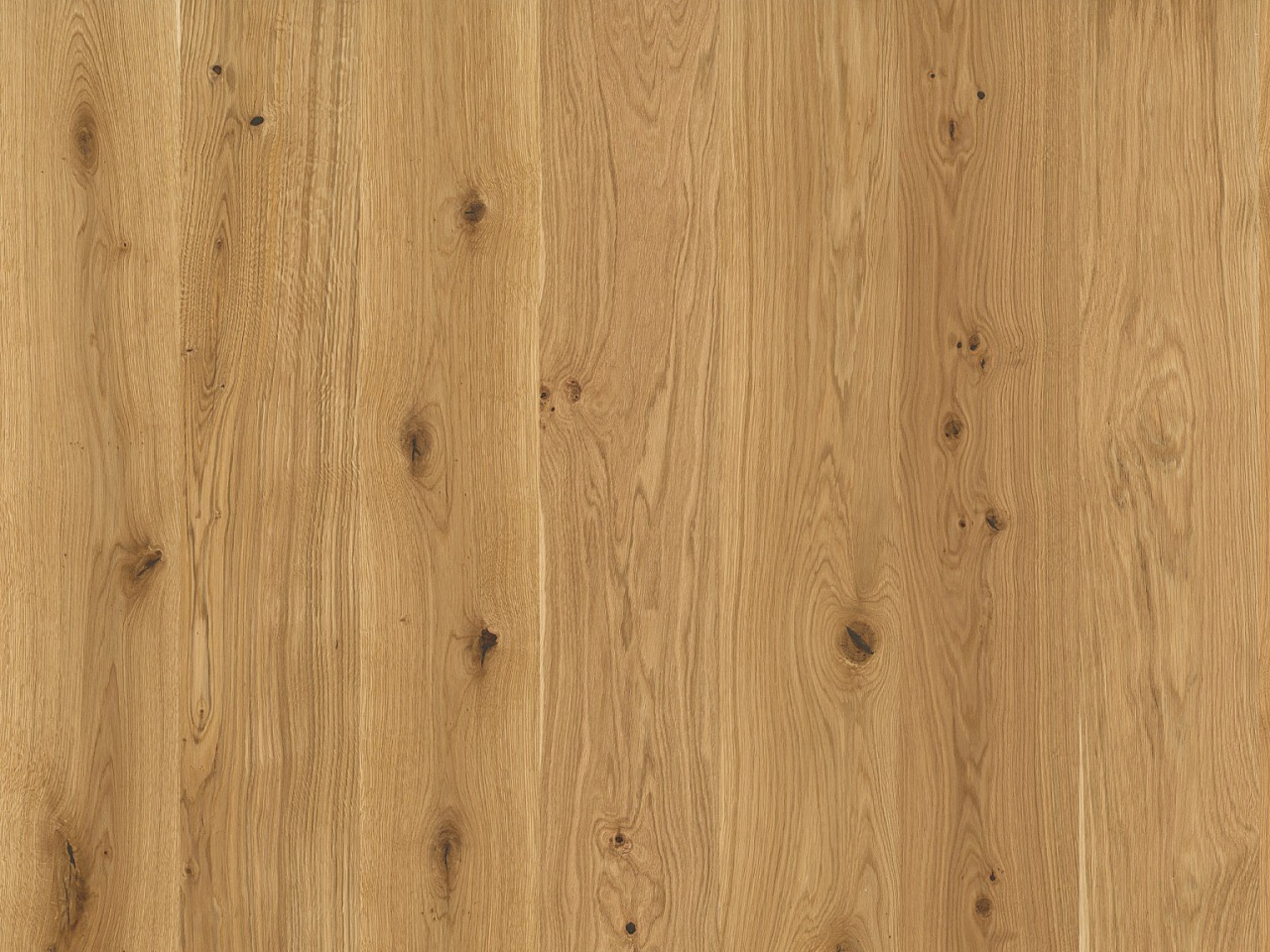 Parkett Maryland new – Caprino Oak, 518264