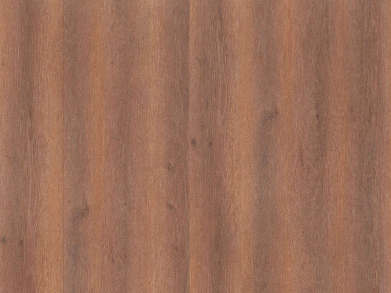 Laminatboden Oak Gallery Format L – Calm Oak darkbrown, LV4167