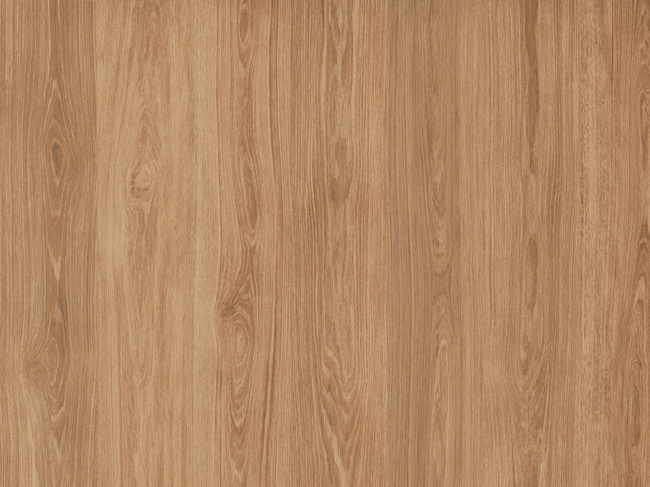 Kork Amora Wood – Domingo Oak kurz, 8F4002