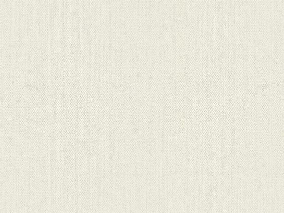 Tapete Wallbasics 2023-017